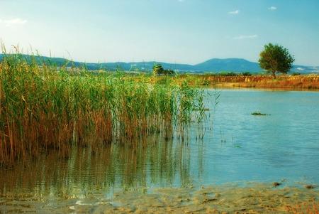 tuzla: View on Erikli Tuzla Lake, Turkey