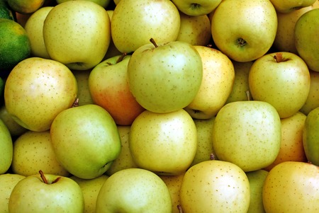 Lots of Yellow ripe apples background