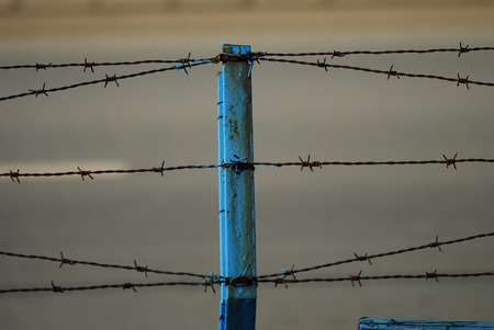 barbed wire frame: Rusty old fences of barb wire Stock Photo