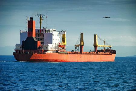 Cargo ship in the Bosporus