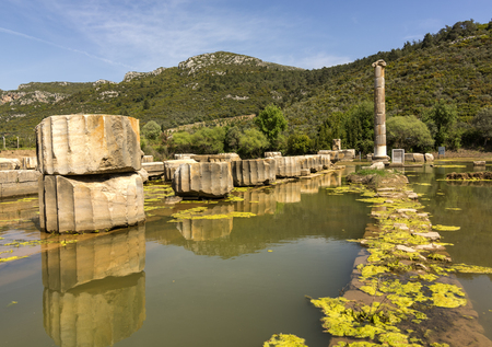 archaeological: claros ancient city