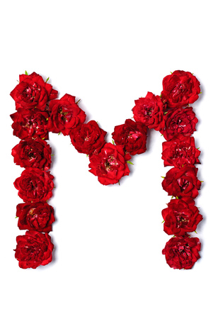 Letter of the English alphabet from red buds of roses on white background