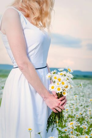 Girl in a white dress in a chamomile field holds in her hands a large bouquet of daisies at sunset, close-up