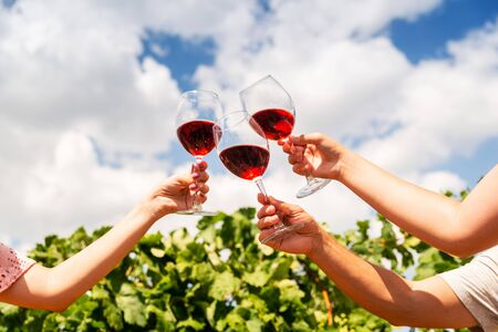 Three large glasses with red wine in a vineyard in female hands, close-up, wine drinking Stockfoto - 134027855