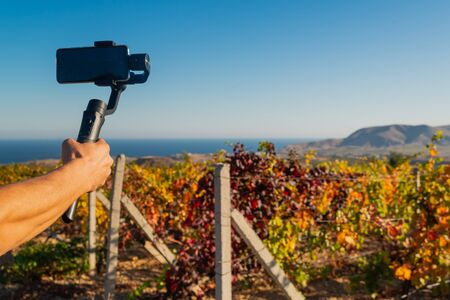 Shooting videos and photos on a mobile phone with a stabilizer in the vineyard in autumn Stockfoto - 134028073