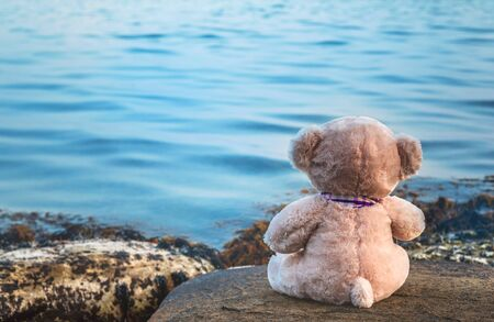 Toy bear on the beach, view from the back, sadness, longing, loneliness, walk, day off Stockfoto - 134847138
