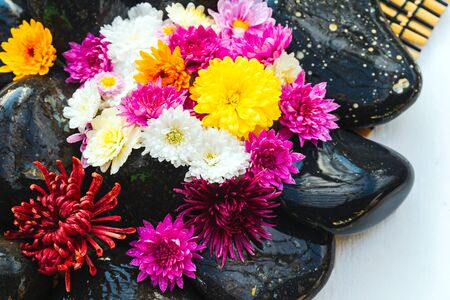 Wet black stones with chrysanthemum buds, decor for spa, relaxation and massage Stockfoto - 134847238