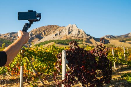Shooting videos and photos on a mobile phone with a stabilizer in the vineyard in autumn Stockfoto - 134847205