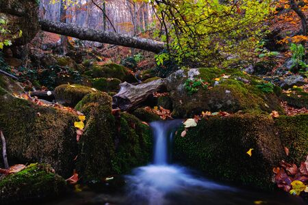 Beautiful waterfall with cascades in a deep autumn forest, water flowing over stones covered with green moss