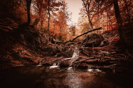 Beautiful waterfall with cascades in a deep autumn forest, water flowing over stones, dramatic mood, dark brown toning