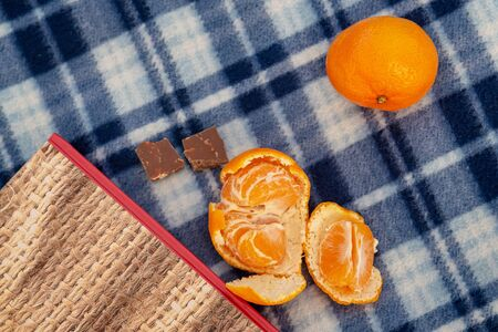 Book, tangerines and chocolate on a blue plaid blanket, concept of vacation, vacation, romance, christmas, reading Stockfoto - 137157725