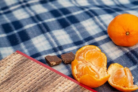Book, tangerines and chocolate on a blue plaid blanket, concept of vacation, vacation, romance, christmas, reading Stockfoto
