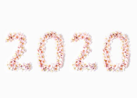 Number 2020 made from spring almond flowers on a white background Stockfoto - 137158285