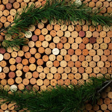 Background from cork wine corks with pine branches, festive concept Stockfoto