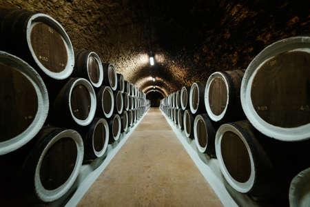 Old oak wine barrels in the cellar of the winery Standard-Bild