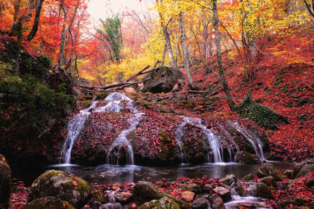 Waterfall in autumn forest with red foliage Stockfoto
