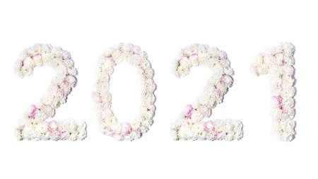 Chrysanthemum bud numbers, flower number 2021
