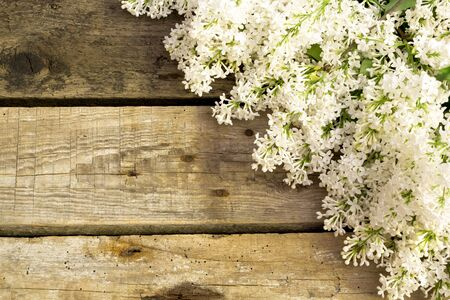 Lilac flowers on wooden background. Spring floral background Stockfoto