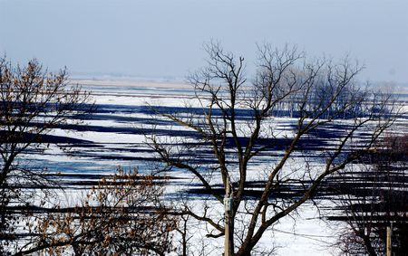 Farmland and several trees in the snow during winter Фото со стока