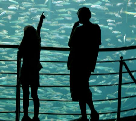 Sister showing brother the fish in silhouette Imagens