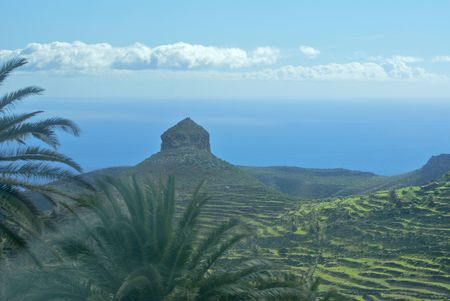 laurel mountain: Peak on Mountain on La Gomera with Palms,Laurel Leaf and Mist