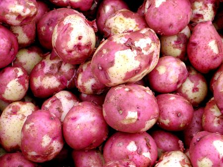 new red potatoes Stock Photo
