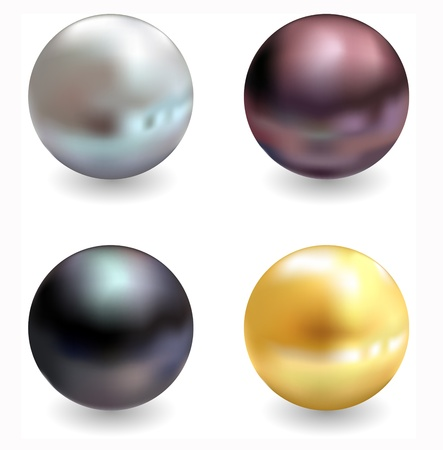 Beautiful pearls, realistic illustration, isolated on a white background Illustration