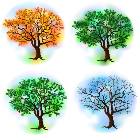 Four season trees Stock Vector - 16922972