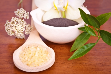 productos naturales: Productos naturales para el cuidado del cuerpo Foto de archivo