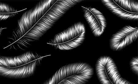 Seamless background with white feathers on black background, isolated