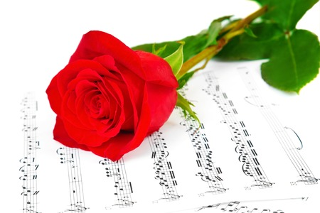 Rose and music sheets with notes, isolated on white photo