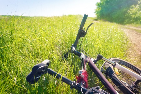 racing bike: Tired bicycle lying in the grass at the roadside