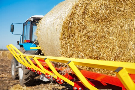 hay field: Straw on a trailer from a tractor in a field on a sunny day Stock Photo