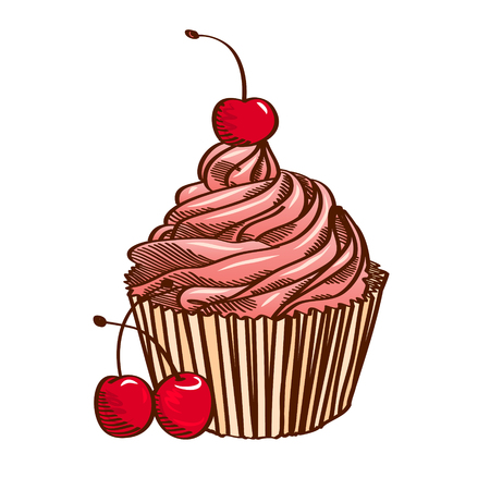 Cupcake with pink cream and cherry, isolated on a white background.