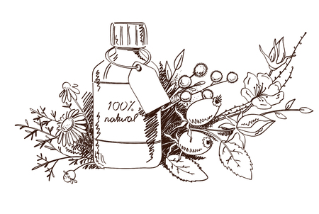 Design with hand drawn herbs and beauty product illustration isolated on white. Ilustração