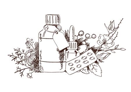 Disegnare a mano piante medicinali e medicina. Il concetto di fitoterapia e medicina alternativa.