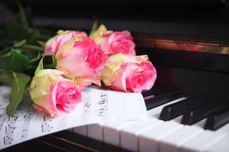 A bouquet of pink roses and notes on the piano keyboard. The concept of a musical education and concerts. Stockfoto