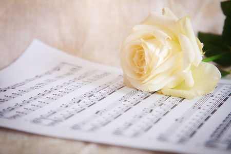 Delicate background with white rose and musical notes. Vintage style.