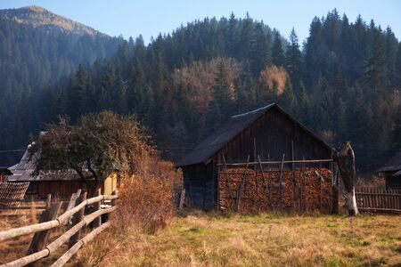 The old wooden buildings on the background of the mountain slope, covered with forest.