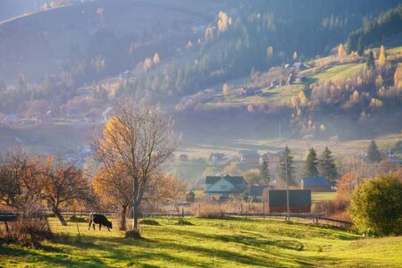 Beautiful picturesque landscape of a mountain village in the fall. Autumn in the mountains.