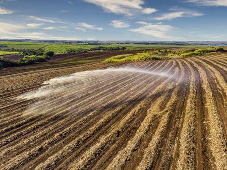 Soil treatment in sugarcane plantation. vinhoto nutritive substance , aerial view.