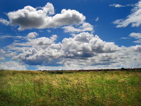 Green grass field and cloudy blue sky