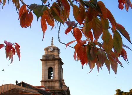 Orange leafs infront of a church photo