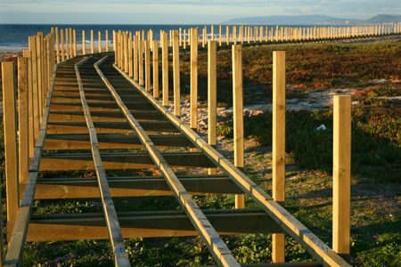 Wood track around a beach Stock Photo - 3908499
