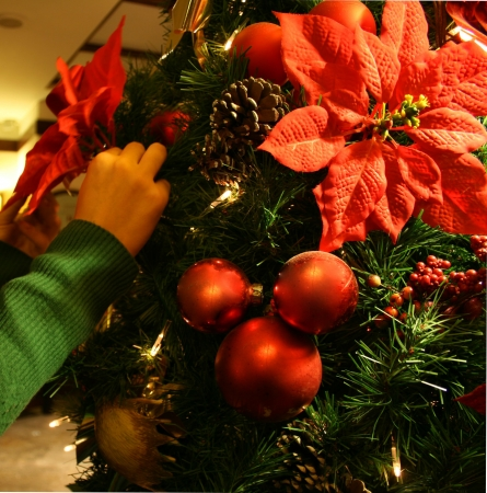 Woman hand making the christmas tree photo