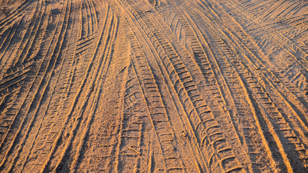 tire tracks: tire tracks in the sand