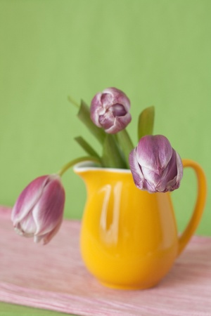 Delicate bouquet of purple tulips in a yellow jug photo
