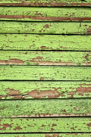 Light green striped texture background photo