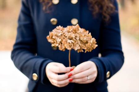 Young beautiful brunette holding a dry hydrangea flower photo