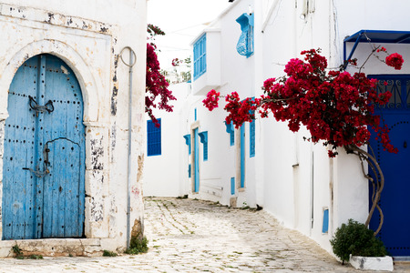 sidi bou said: Blue doors, window and white wall of building in Sidi Bou Said
